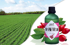玫瑰果油保湿补水修颜抗皱淡疤