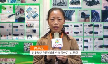 COTV全球直播: 河北清河县源嵘密封件有限公司