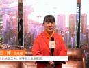 中国网上市场报道: 嵊州信源芝华仕头等舱沙发旗舰店