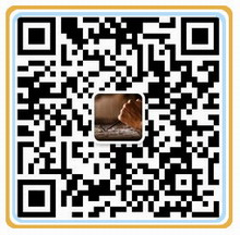 QQ图片20191128235333.jpg