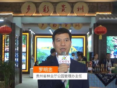 中国网上市场发布: 中国森林旅游节