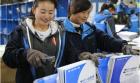 """中网市场ChinaOMP.com_物流企业备战""""双12"""" 绿色快递成新风景"""