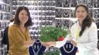 中網市場ChinaOMP.com_中網市場發布:義烏市海蓮飾品有限公司專營亮雅·麗人飾品