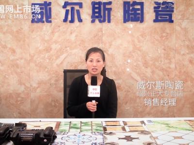 中国网上市场报道: 威尔斯陶瓷绍兴正大专营店