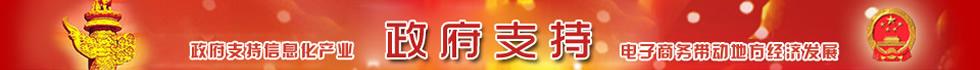 32个地方政府对中国网上市场支持文件