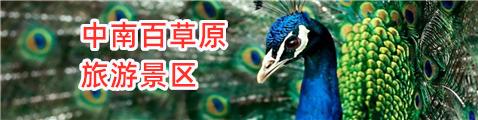中南百草原旅游景区