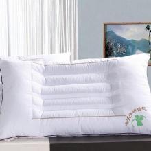 决明子枕头 荞麦保健枕 颈椎磁疗枕芯